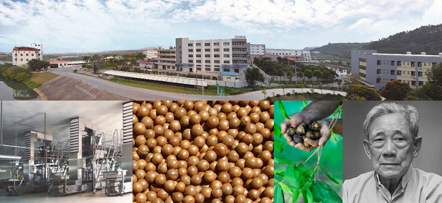 a trusted macadamia processor